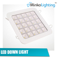 25W led down light special design for project led