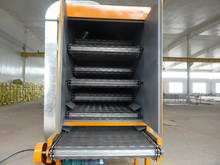 Mesh belt dryer for fruit vegetables