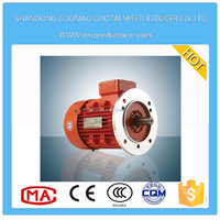 220 Volt 2.2KW Three Phase AC Electric Motor