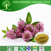 100% natural Red Clover Extract / Isoflavones