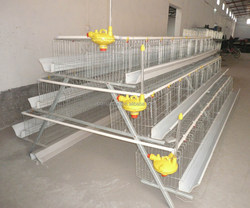 Design layer chicken battery cage For Sale /chicken egg layer cages/used chicken cages for sale