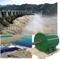 1kw-1200kw High Efficiency Hydro Electric Generator/water power generator