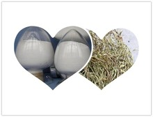 10%~98% Salicin extract from Salix alba bark