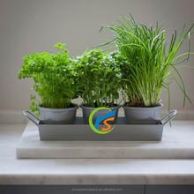 Decorative metal flower pots set with holder for sale