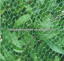 birds cages net