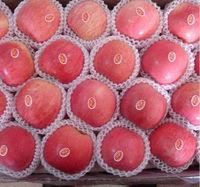Best Price Red Sweet Fresh Fuji Apple Market Fruit