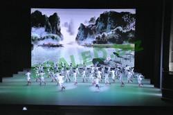 curtain display LED gym stadium