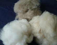 Mixed color of cashmere fiber,sharrefun cashmere fiber natural white/Lt. grey/brown,100%wool cashmere fiber
