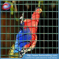 1x1Bird cage wire mesh / PVC coated welded mesh for cages