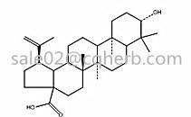 Betulinic acid-Factory plant extracts KG 98% by HPLC CAS:472-15-1 Betulinic acid