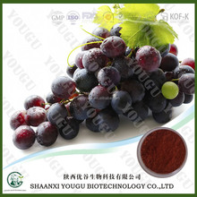 Botanical grape seed extract supplement with antioxidant benefits
