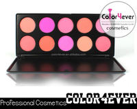 Wholesale brand makeup custom logo 10 Color Makeup Blush Palette