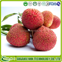 Factory supply Custom design Natural Litchi chinensis Sonn Extract 10:1 20:1 or other ratio