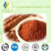 Food Grade nature cocoa powder,low price supply pure black cocoa powder