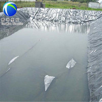 earthwork products 60 mil cheap price hdpe liner for water reservoir