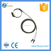 Feilong room temperature sensor and water