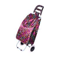 Hot sale 600D polyester/Satin EVA wheel folding foldable shopping trolley bag