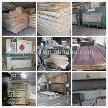 18mm Shuttering Plywood 1220*2440mm and hardwood and birch core film faced plywood