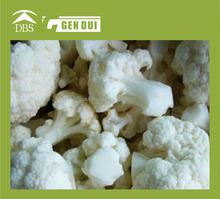 100% pure natural frozen white broccoli