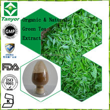 Chinese Qingling Mountains Green tea extract Natural Catechin Caffeine powder