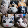 2015 new design high quality vivid car seat 3D cat dog cushion with filling .