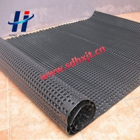 plastic dimple drainage sheet used in the road drain