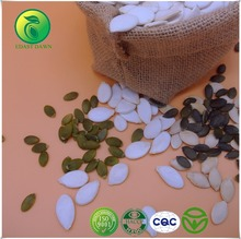 Innovative Products for Import Bulk Pumpkin Seeds Puree