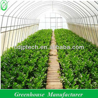 Poly Tunnel Greenhouse 5 Layers Film