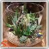 Mini ornamental artificial tropical succulent plants for decoration