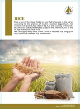 agricultural products of rice import company