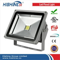 LEDwholesalers 30 Watt LED Waterpoof Outdoor Security Floodlight 85-264v Ac, 3701WH