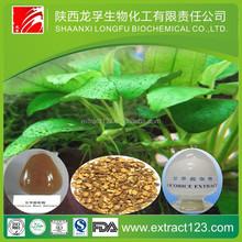 Manufacturer Supply Radix Glycyrrhizae Extract Powder