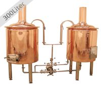 300liter mini beer manufacturing machine for small business