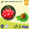 Free sample supported tranquilization function TOP quality Chinese Supplier Schisandra Fruit P.E. HPLC tested