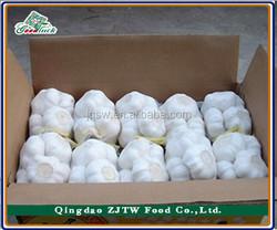 Fresh Garlic supplier China Natural Garlic Price