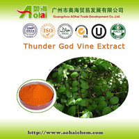 High demand Tripterygium wilfordii / thunder god vine extract 98% Triptolide to treat pancreatic cancer