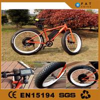 2015 fat tire beach ebike e bike made in China by LEILI