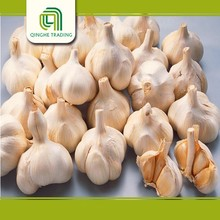china china red garlic pickled garlic from china