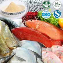 Top quality Halal fresh pure fish powder for food ingredients/flavor seasoning