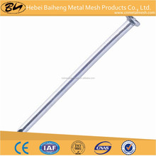 metal colored polished common nail of china factories