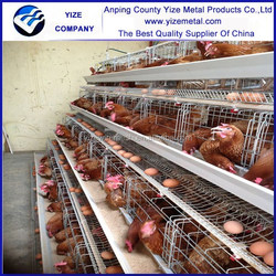 High sales excellent chicken house designed for chicken cage/chicken cage for sale
