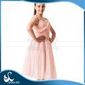 Vestido del Ballet proveedor Anna Shi estratificado tutús de Ballet clásico