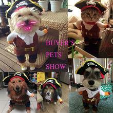 Halloween pet costumes dog pirate costume