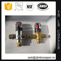 S.S Panel Gas Water Heater(GWH-501)