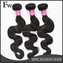 Faceworld hair fast shipping filipino hair,virgin filipino hair,best selling filipino human hair