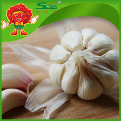 High Quality Garlic Wholesale Fresh Chinese garlic