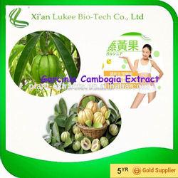 Wholesale organic raw material garcinia cambogia extract