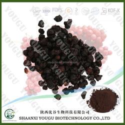 2015 New Product Natural powder Fruit Schisandra extract, factory supply Schisandra extract