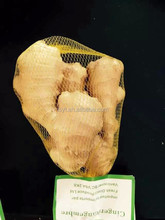 Air Dried Yellow Fresh Ginger For Exporting