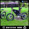 Irregular big power 1500w three wheel electric motor bike